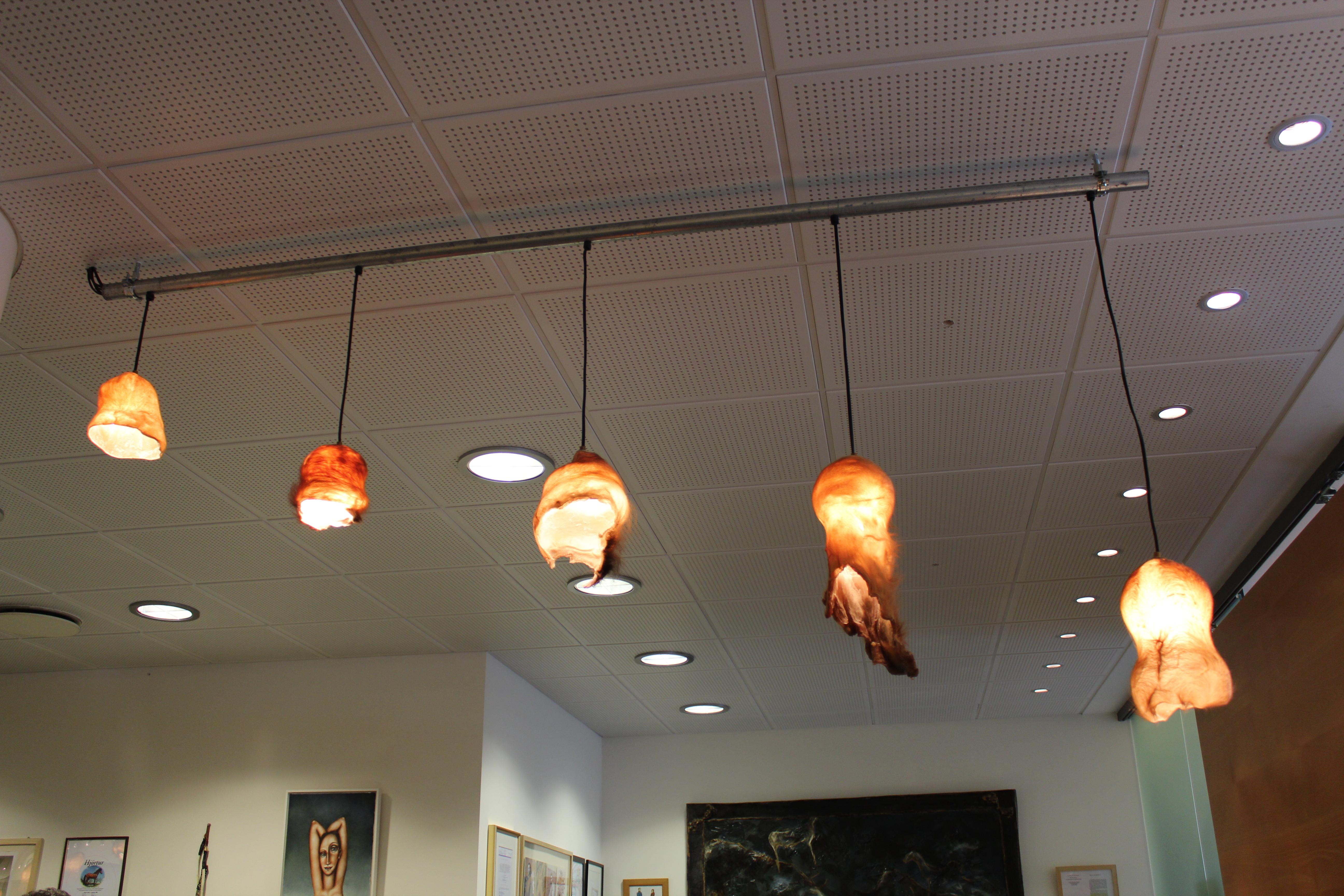Bull scrotum lampshades.