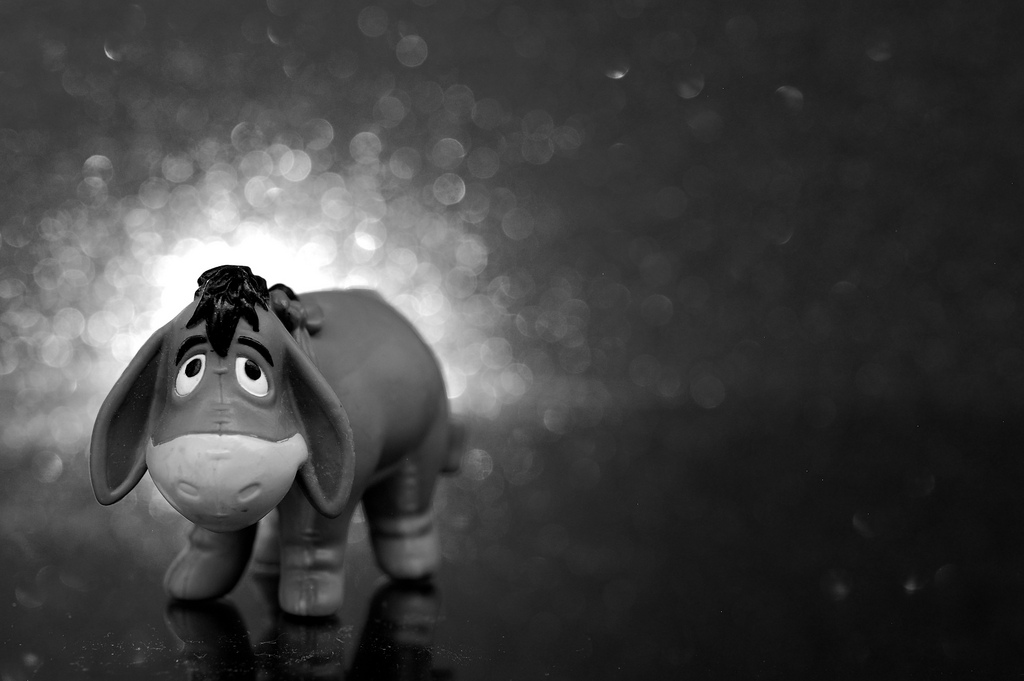 Playdate with Eeyore: Why Big Data science means big challenges for reporters : The Last Word On Nothing