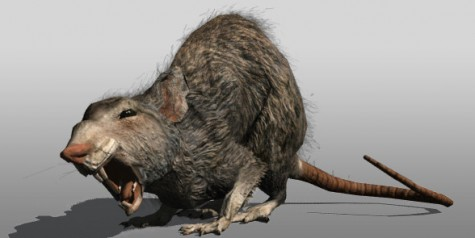 """Rats of unusual size? I don't believe they exist."""