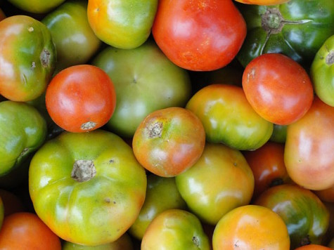 450px-A_scene_of_Tomatoes1