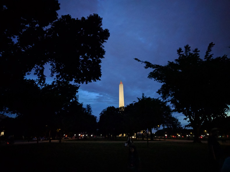 The Washington Monument at night, behind a bunch of trees