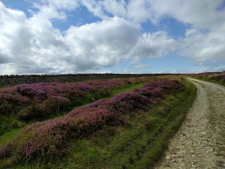 road through heather
