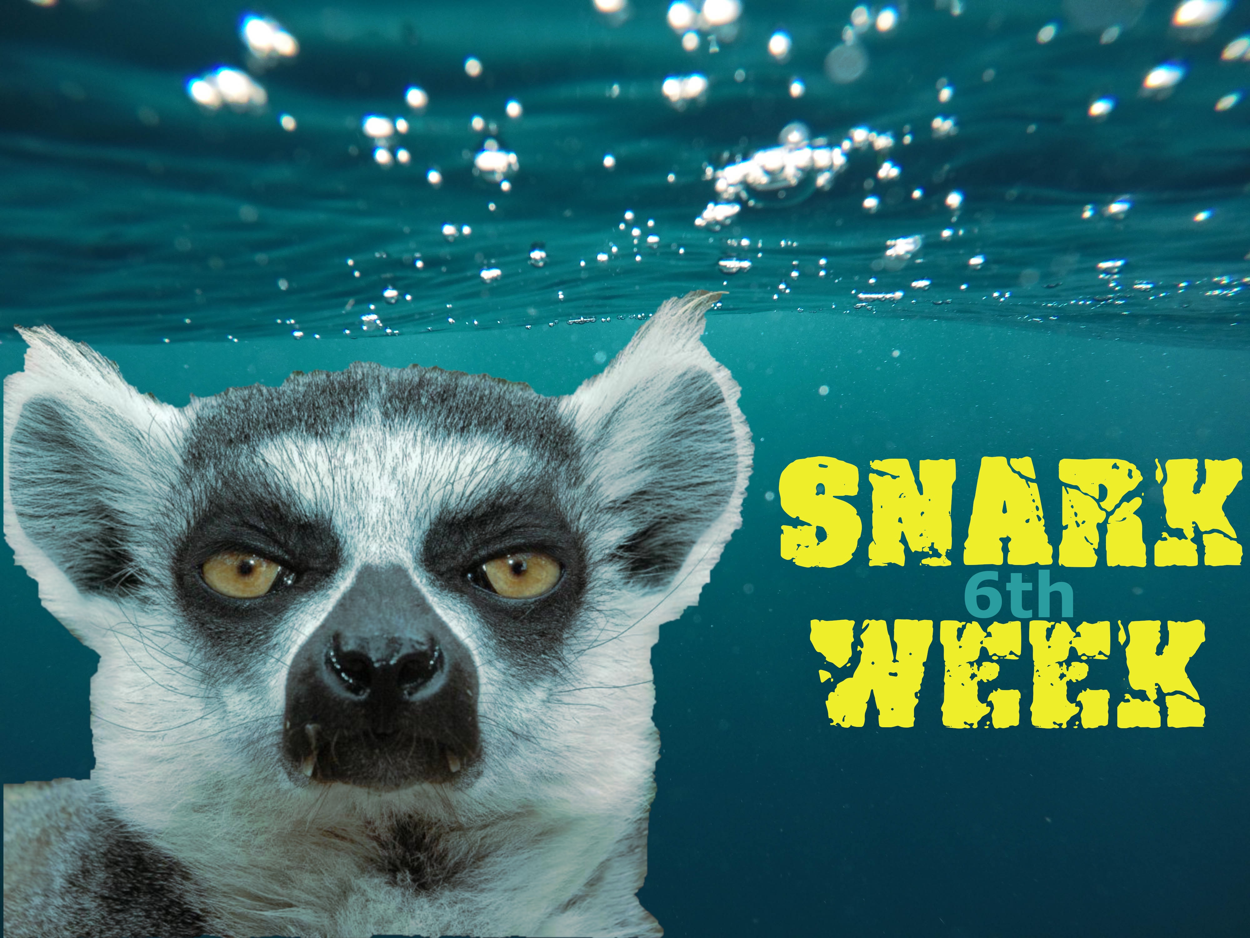 "3ca3172cc4 3 thoughts on ""Welcome to Snark Week 2018!"""